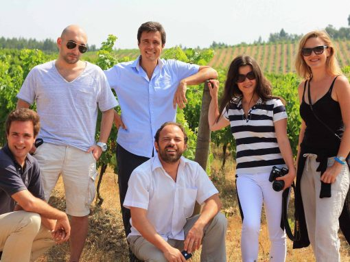 Visit of Polish Bloggers to Wine With Spirit